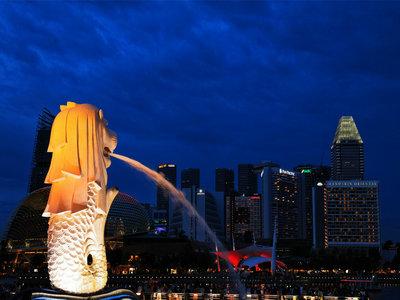 新加坡签证必须本人去提交材料吗?