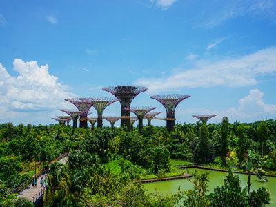 长沙人如何申请新加坡签证?