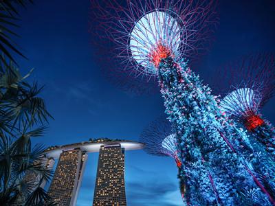 新加坡签证可以自己办理吗?需要什么材料?